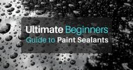 Ultimate Beginner's Guide to Paint Sealants – Save Time & Your Car's Paint